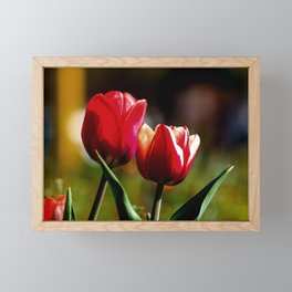 Concept nature : Falling in love Framed Mini Art Print