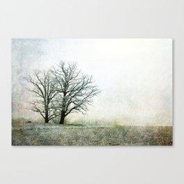 What Tomorrow Brings Canvas Print