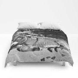 Black and white Burro  Comforters