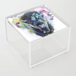 Bison Acrylic Box
