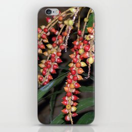 coffee plant (Bali, Indonesia) iPhone Skin