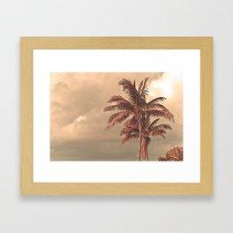 Retro Palm Tree Framed Art Print