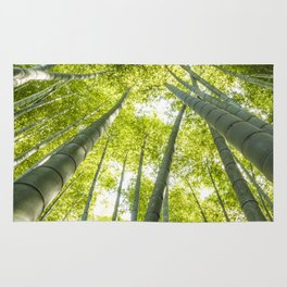 Bamboo forest in Japan Rug