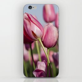 Dancing Tulips iPhone Skin