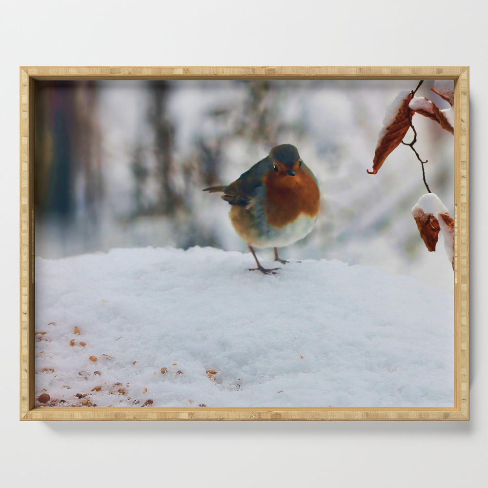 Robin Redbreast Serving Tray by valzart (DST3880308) photo