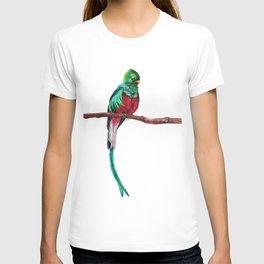 Pharomachrus mocinno T-shirt
