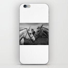 Horses of Instagram II iPhone Skin