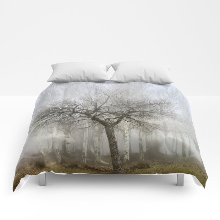 The first one Comforters