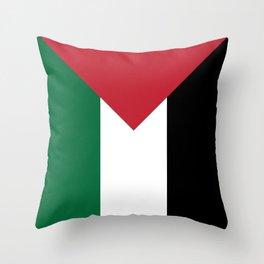 OG x Palestinian Flag Throw Pillow