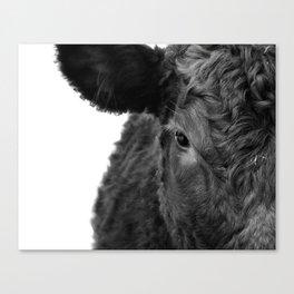 Half calf Canvas Print