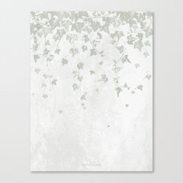 Soft Gray Green and White Trailing Ivy Leaf Print Canvas Print