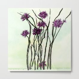 Invasive Knapweed Metal Print