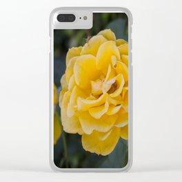 Rose Garden Six (with bonus friend) Clear iPhone Case