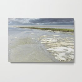 slightly frozen Metal Print