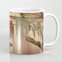 college Mugs featuring College of Charleston by Kaelyn Ryan Photography