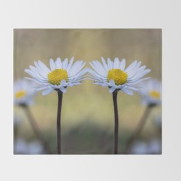 Mirroring delicate daisy flowers Throw Blanket