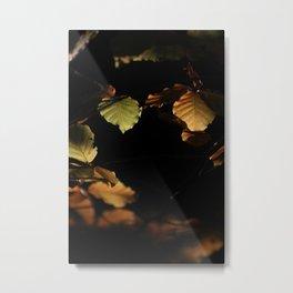 Leaves black hole Metal Print