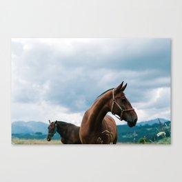 Horses in the Tatras Canvas Print