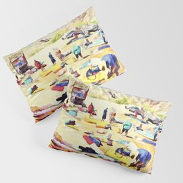 Grand Canyon Put In Pillow Sham