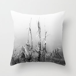 Echoes Of Reeds 1 Throw Pillow