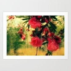 A promise of sweet softness Art Print