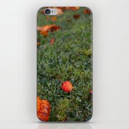 Autumn crab apple iPhone Skin