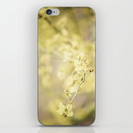 Bask in the Warmth iPhone Skin