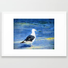 Seagull on Beach Framed Art Print