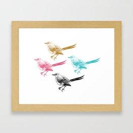 Mockingbirds  Framed Art Print