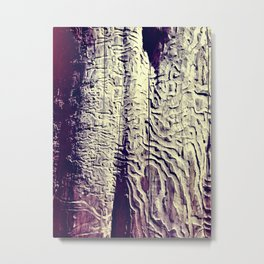 Lost in the Mze Metal Print