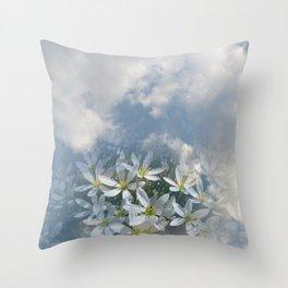 Window Curtains - Morning Fresh Throw Pillow