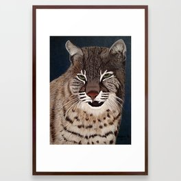 Bocat Framed Art Print