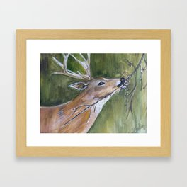 Just A Nibble Framed Art Print