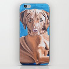 Sou the Vizsla iPhone Skin