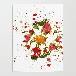 Beautiful Australian Native Floral Graphic Poster