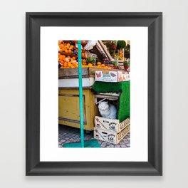 Le Chat du Marché Framed Art Print