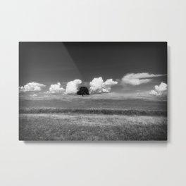 Unique a single oak tree among the clouds Metal Print