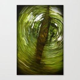 Springtime (Conditions Variable) Canvas Print