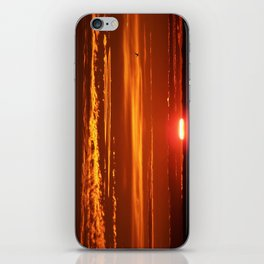 Red Sky Flight iPhone Skin
