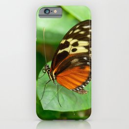 Tiger Longwing-4 iPhone Case