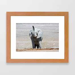 NAMIBIA ... Elephant fun III Framed Art Print