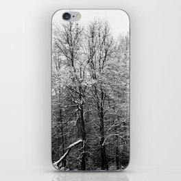 Graphic forest iPhone Skin