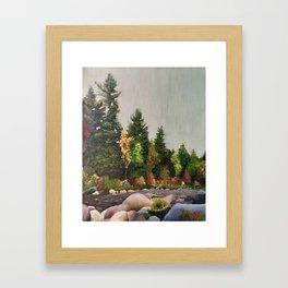 Upstate New York Gorges Framed Art Print