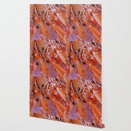 Gourmet Shrimp Wallpaper