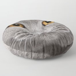 Cat in Grey Floor Pillow