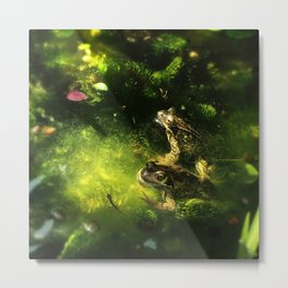 Frogs & Newts in the Garden Pond Metal Print
