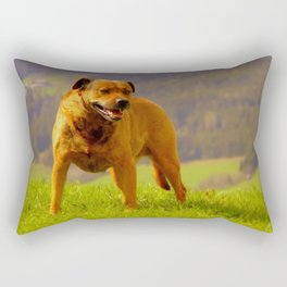 Garry Rectangular Pillow
