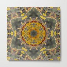 Kangaroo Paw Kaleidoscope Metal Print