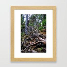 A Treacherous Trail Framed Art Print