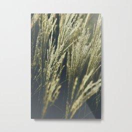 Caught in Wind (Version 1 - Cooler) Metal Print